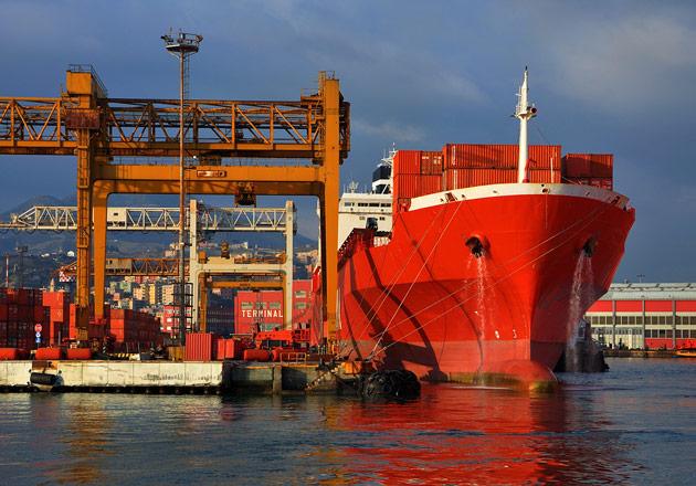Dock cranes and docked cargo ship